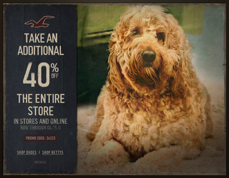 hollister 40% off coupon