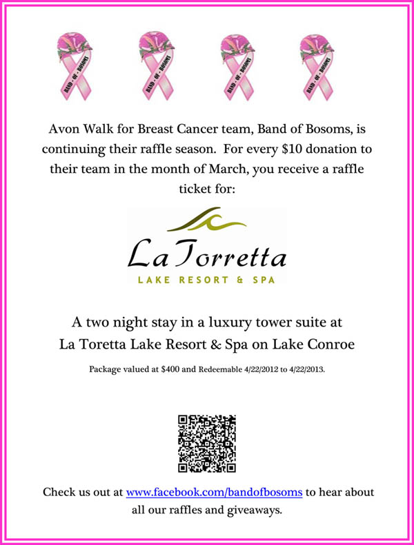 Band of Bosoms Raffle Flyer March 2012